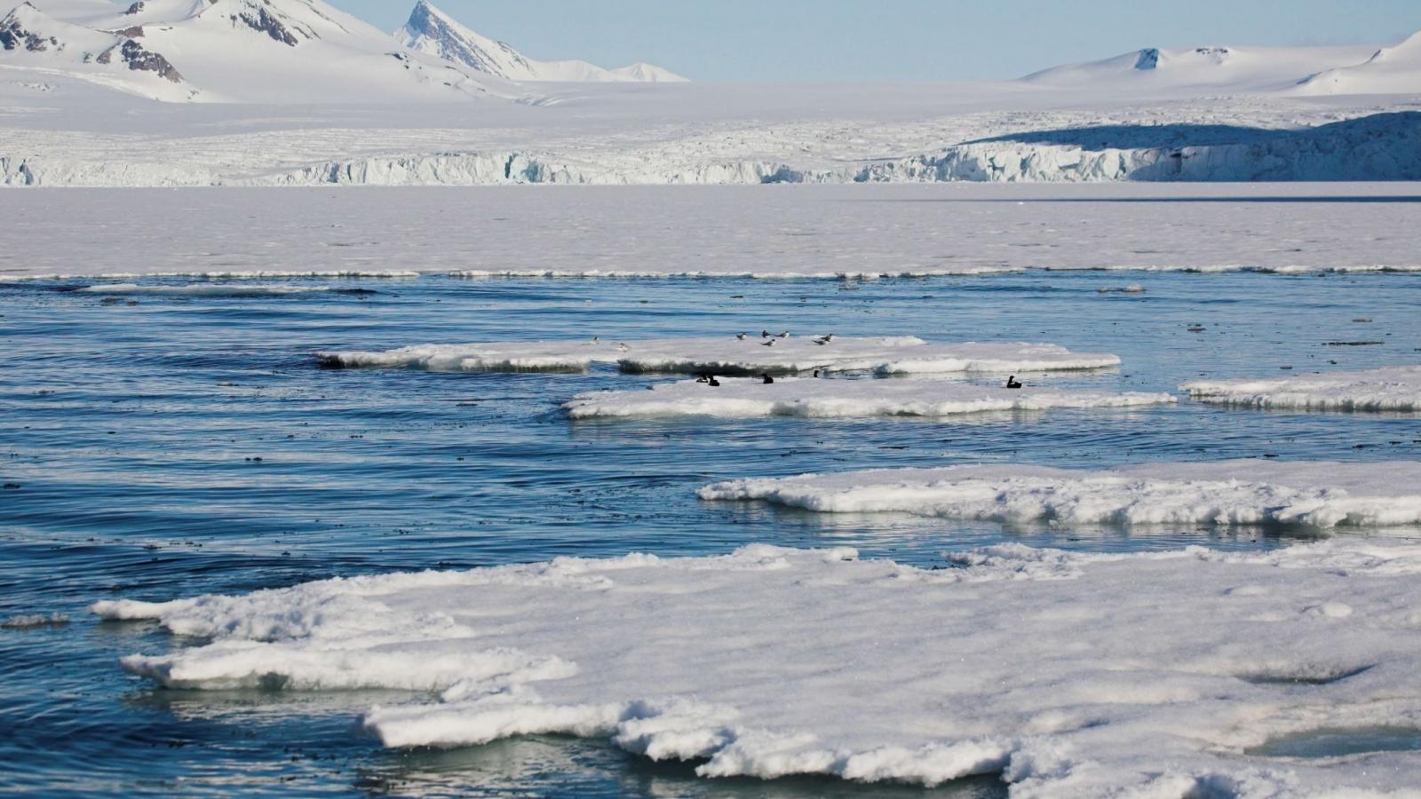 """Trung Quốc đang """"mượn tay"""" Nga thúc đẩy tham vọng ở Bắc Cực?"""