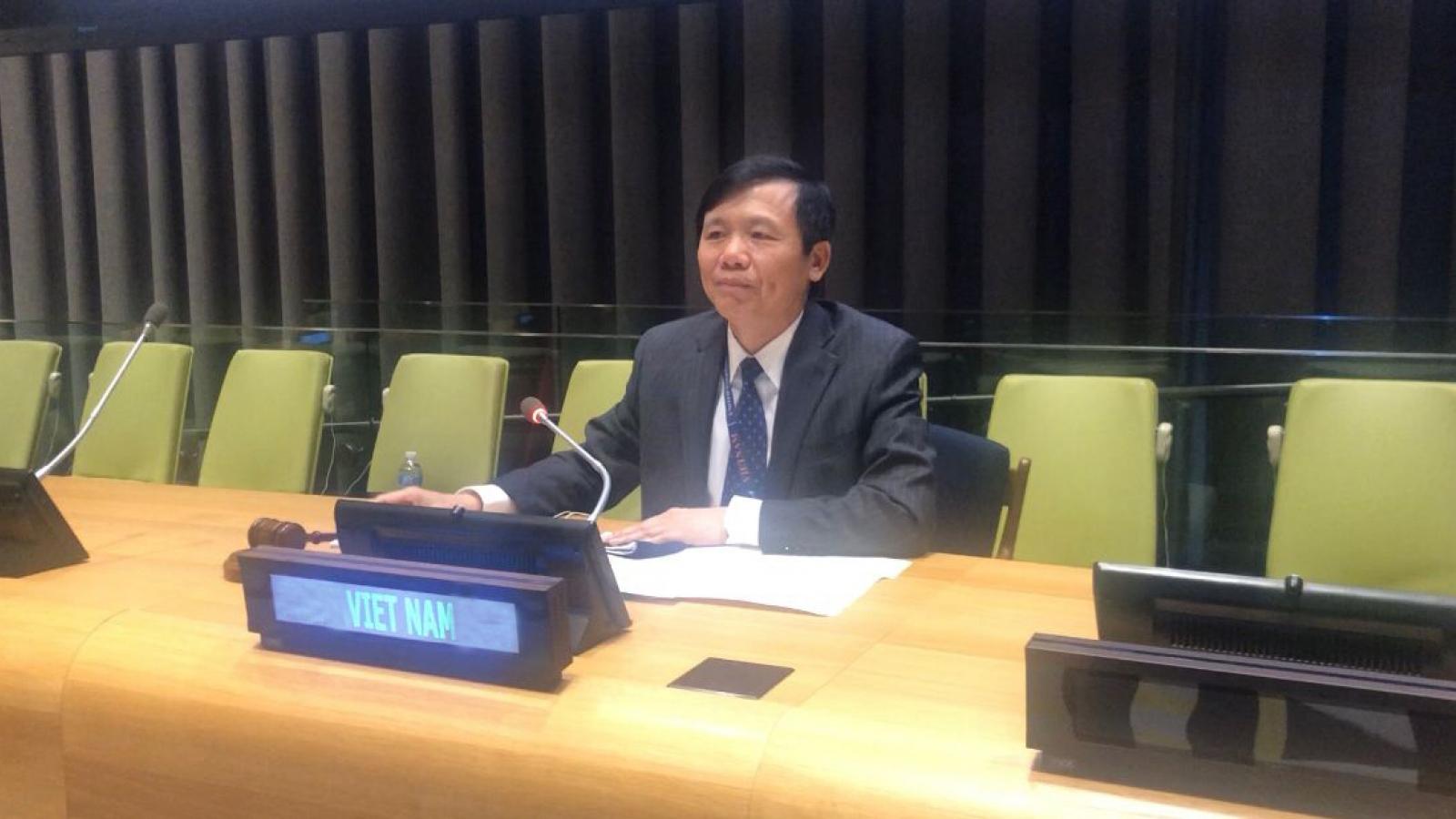 Việt Nam chủ trì phiên họp của Ủy ban trực thuộc Hội đồng Bảo an về Nam Sudan