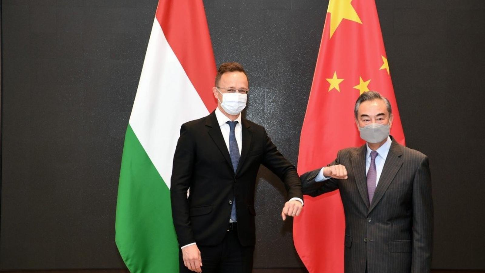 """Nhận """"thẻ vàng"""", Trung Quốc tăng cường nỗ lực lôi kéo châu Âu"""