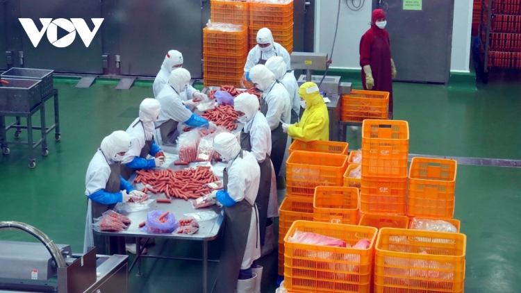 Manufacturing and processing sector tops FDI attraction