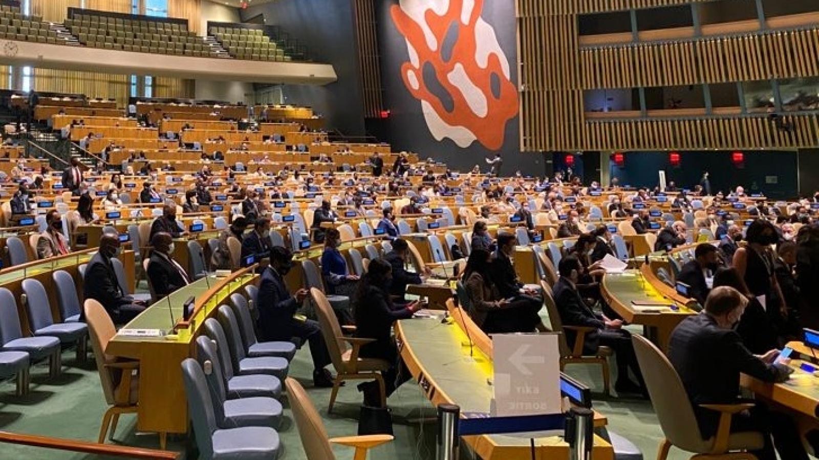 Liên Hợp Quốc bầu Chủ tịch Đại hội đồng và cơ quan chủ chốt