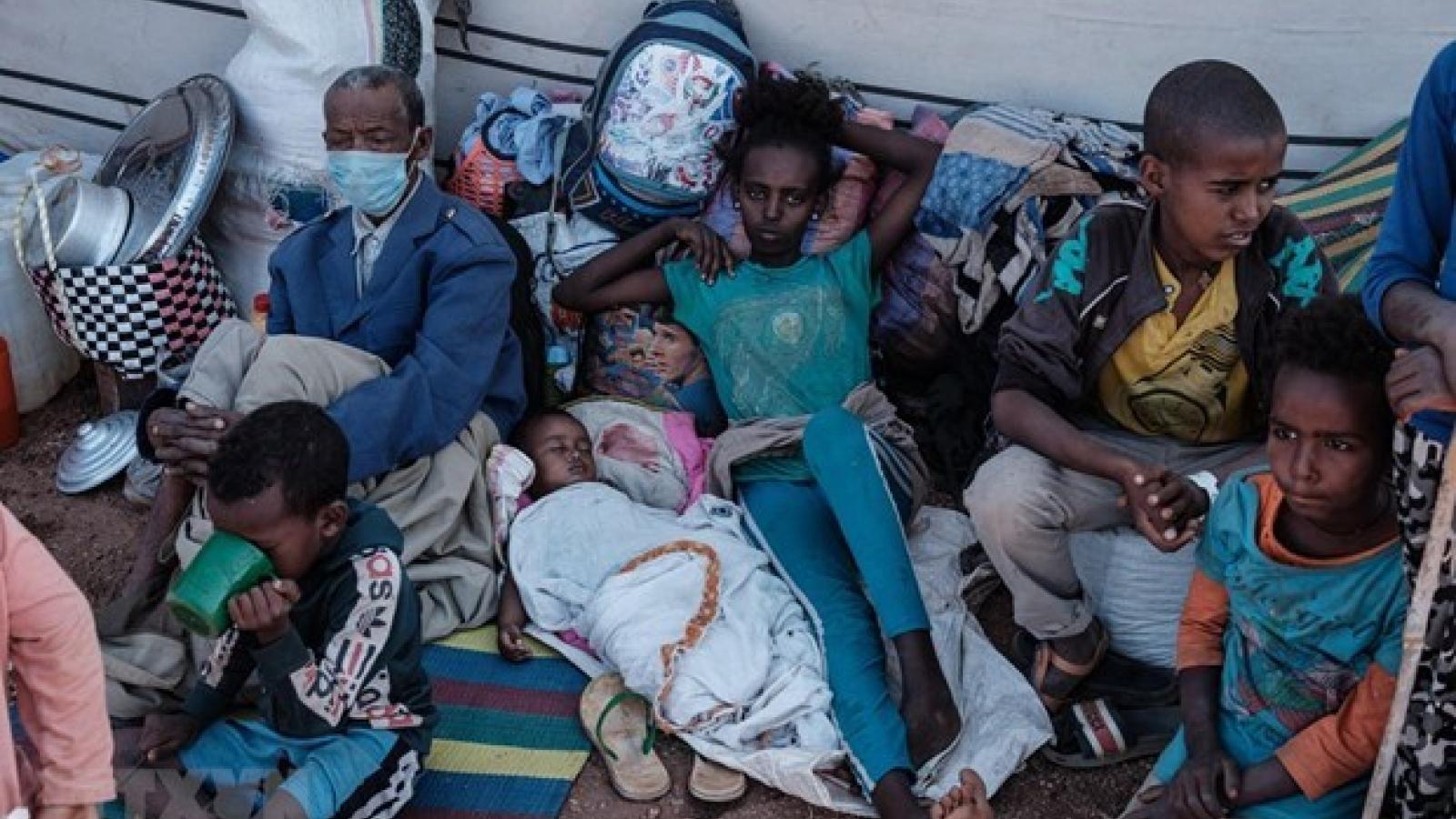 Vietnam hails hunger prevention efforts in Ethiopia