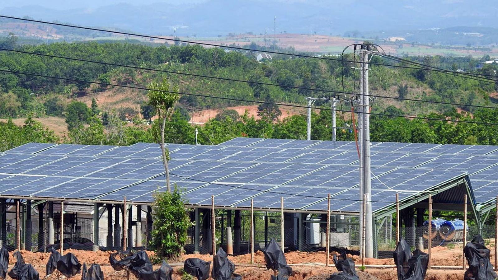 Kiểm tra, xử lý nghiêm các dự án điện mặt trời có vi phạm