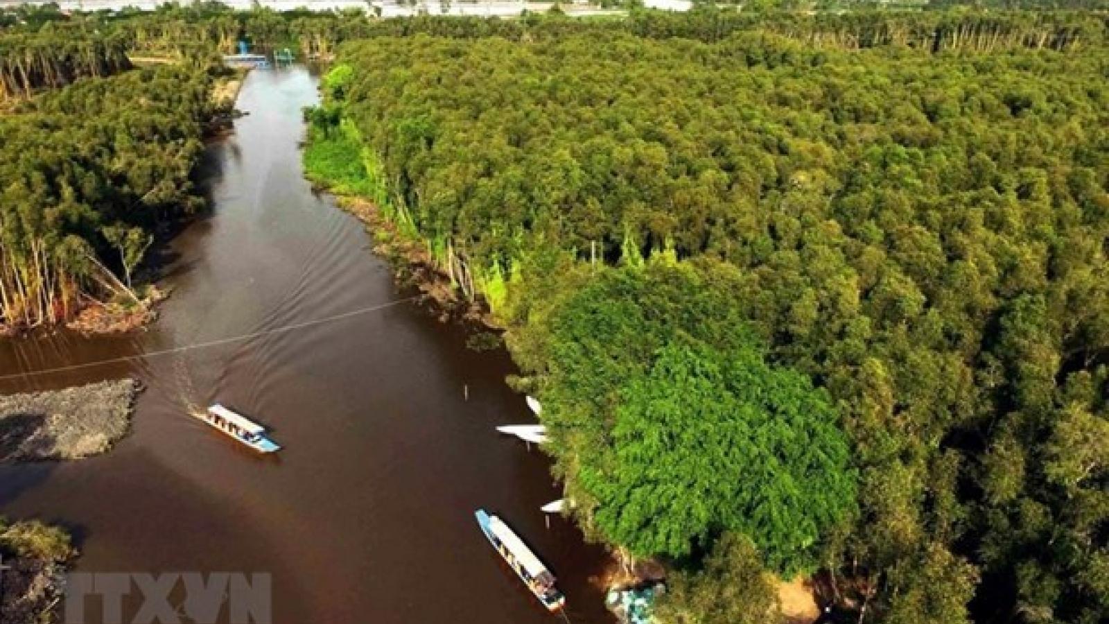 World Environment Day: Vietnam preserving Mekong Delta's ecosystem
