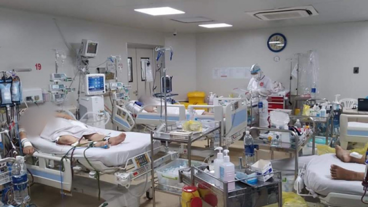 173 COVID-19 patients in critical condition, 13 rely on ECMO