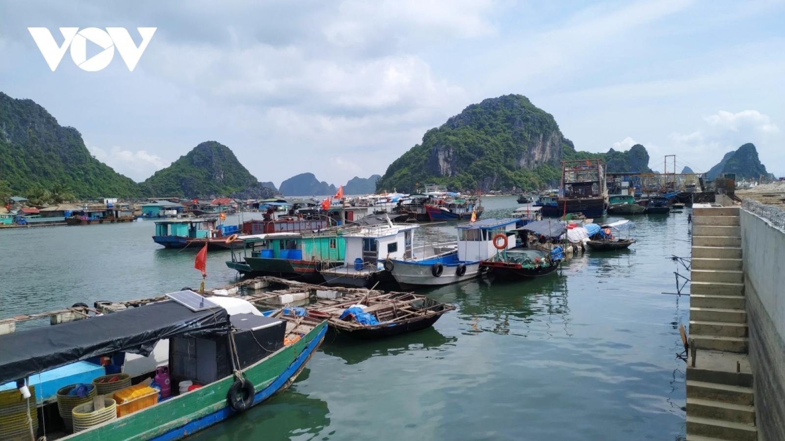 Quảng Ninh hỏa tốc triển khai các biện pháp phòng chống bão số 2 - Koguma