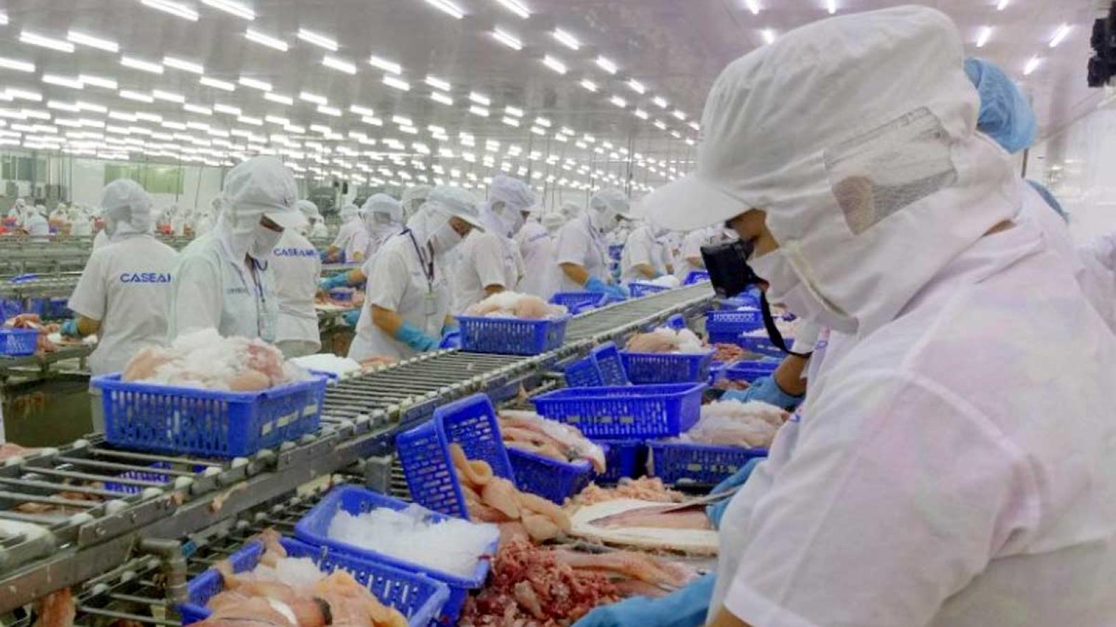 Xuất khẩu thuỷ sản sang Trung Quốc giảm liên tiếp do Covid 19