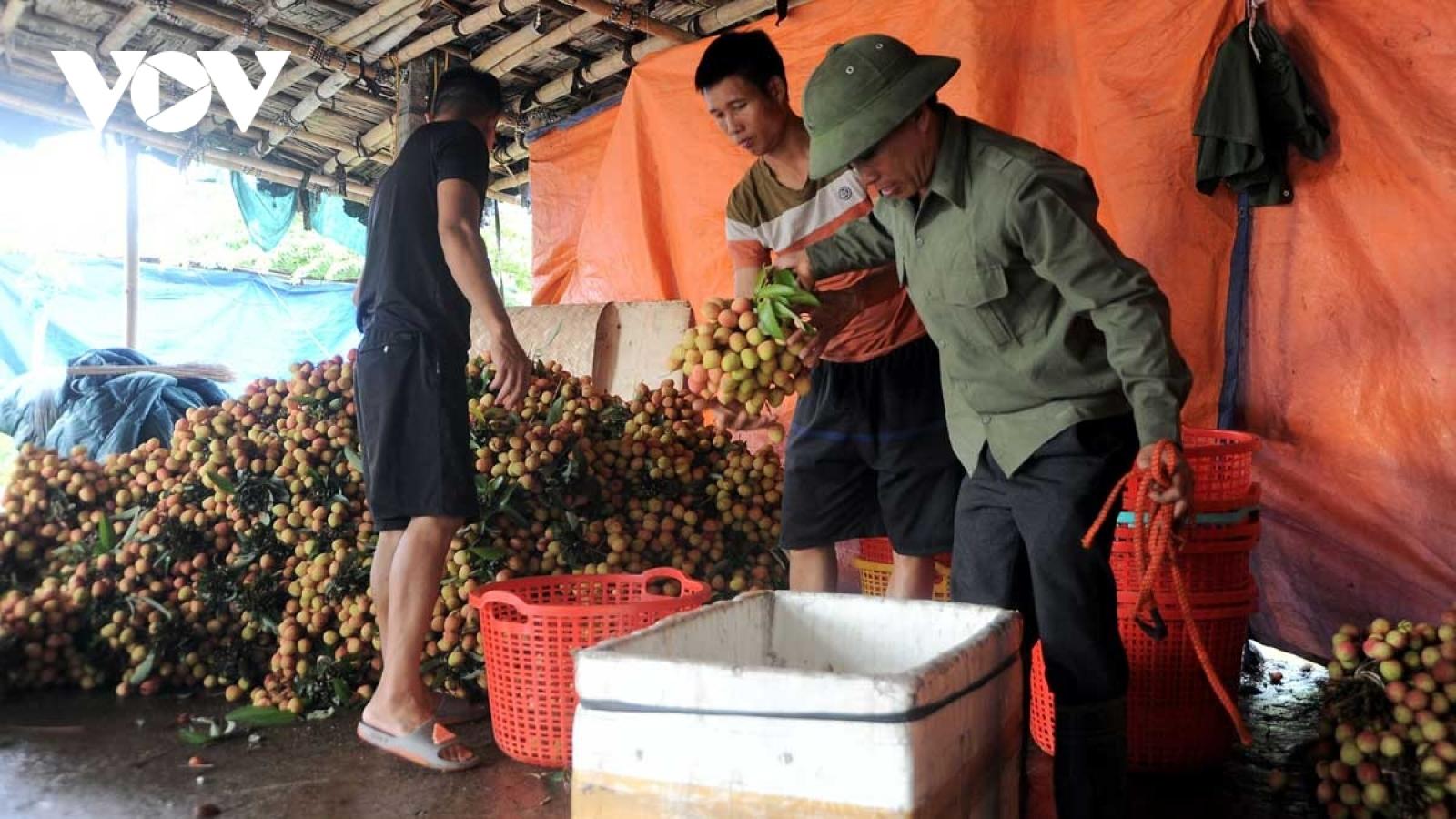 Chợ truyền thống - kênh phân phối chủ yếu quả vải tại thị trường nội địa