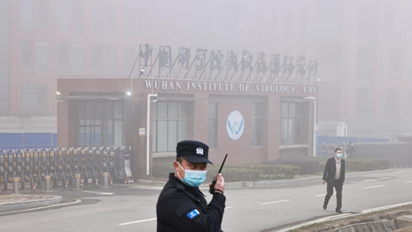 """Nghiên cứu của Mỹ: Giả thuyết SARS-CoV-2 rò rỉ từ phòng thí nghiệm Vũ Hán là """"hợp lý"""""""