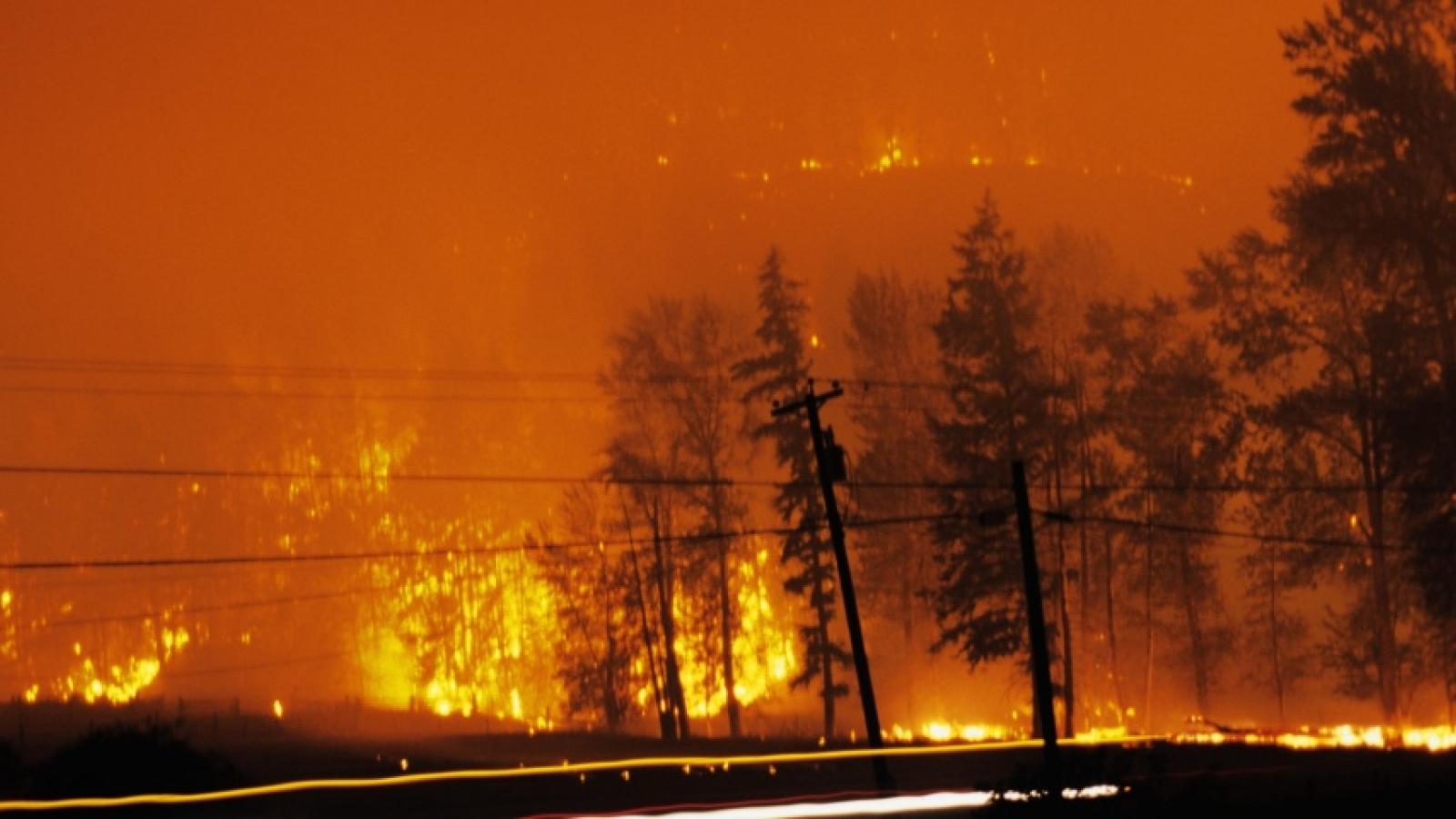 Nắng nóng, cháy rừng tại Mỹ và Canada: Hậu quả rõ ràng của biến đổi khí hậu