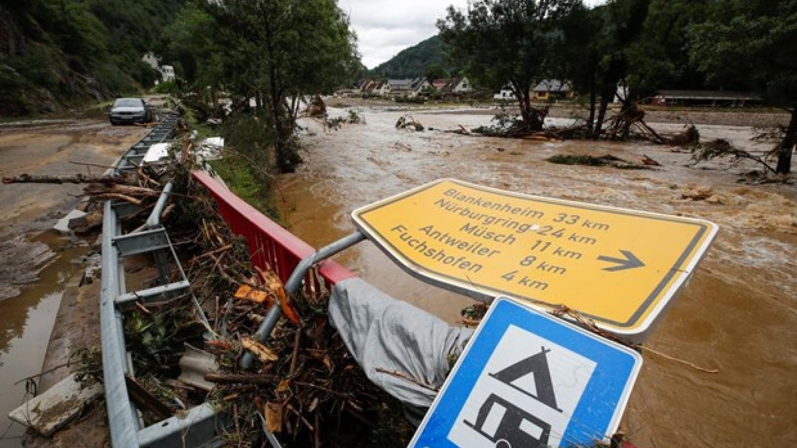 Số người chết vì mưa lũ tại Đức, Bỉ gia tăng
