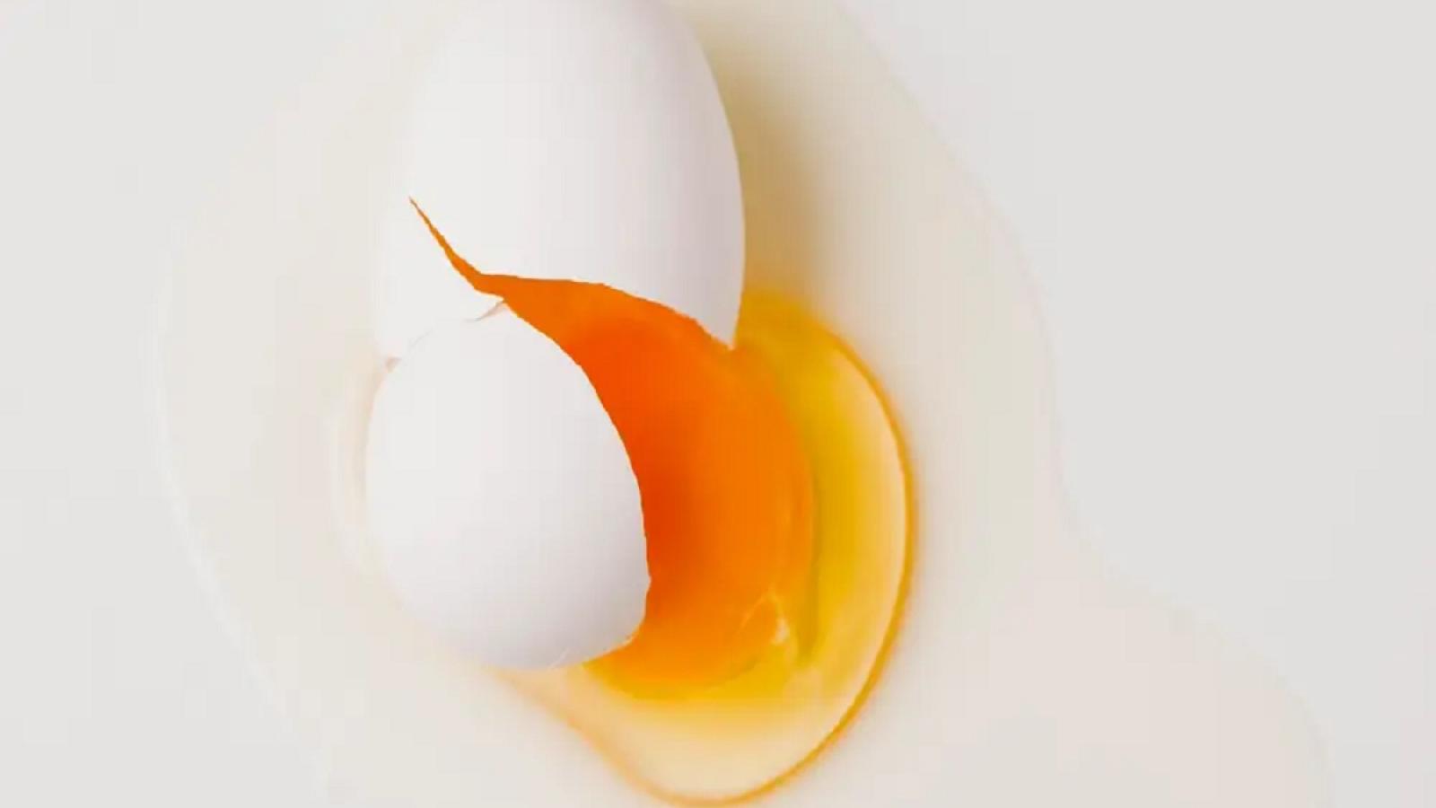 Dịch tiết âm đạo màu vàng: Dấu hiệu cảnh báo sức khỏe bất thường ở phụ nữ