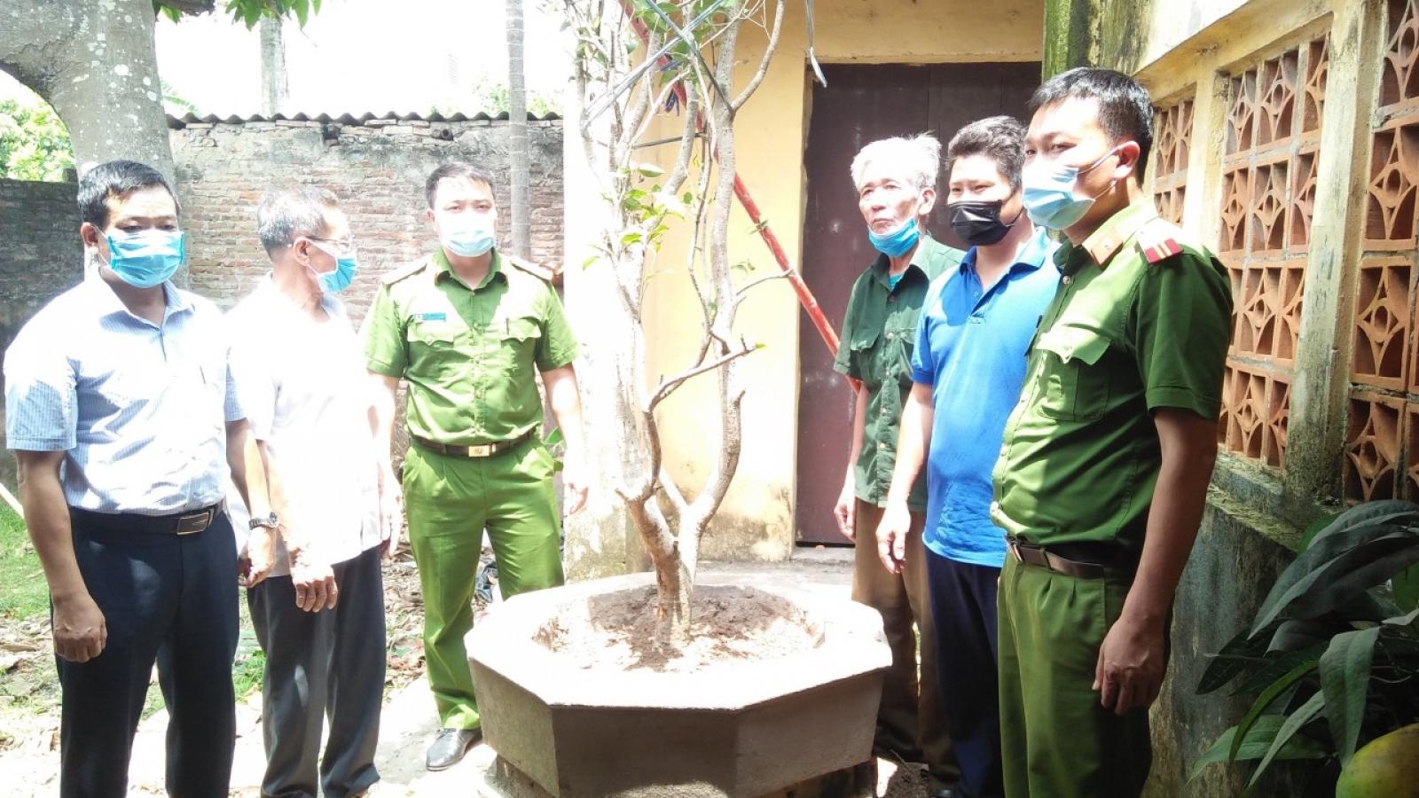 Hưng Yên bắt giữ các đối tượng trộm cắp cây mộc hương tại đình làng
