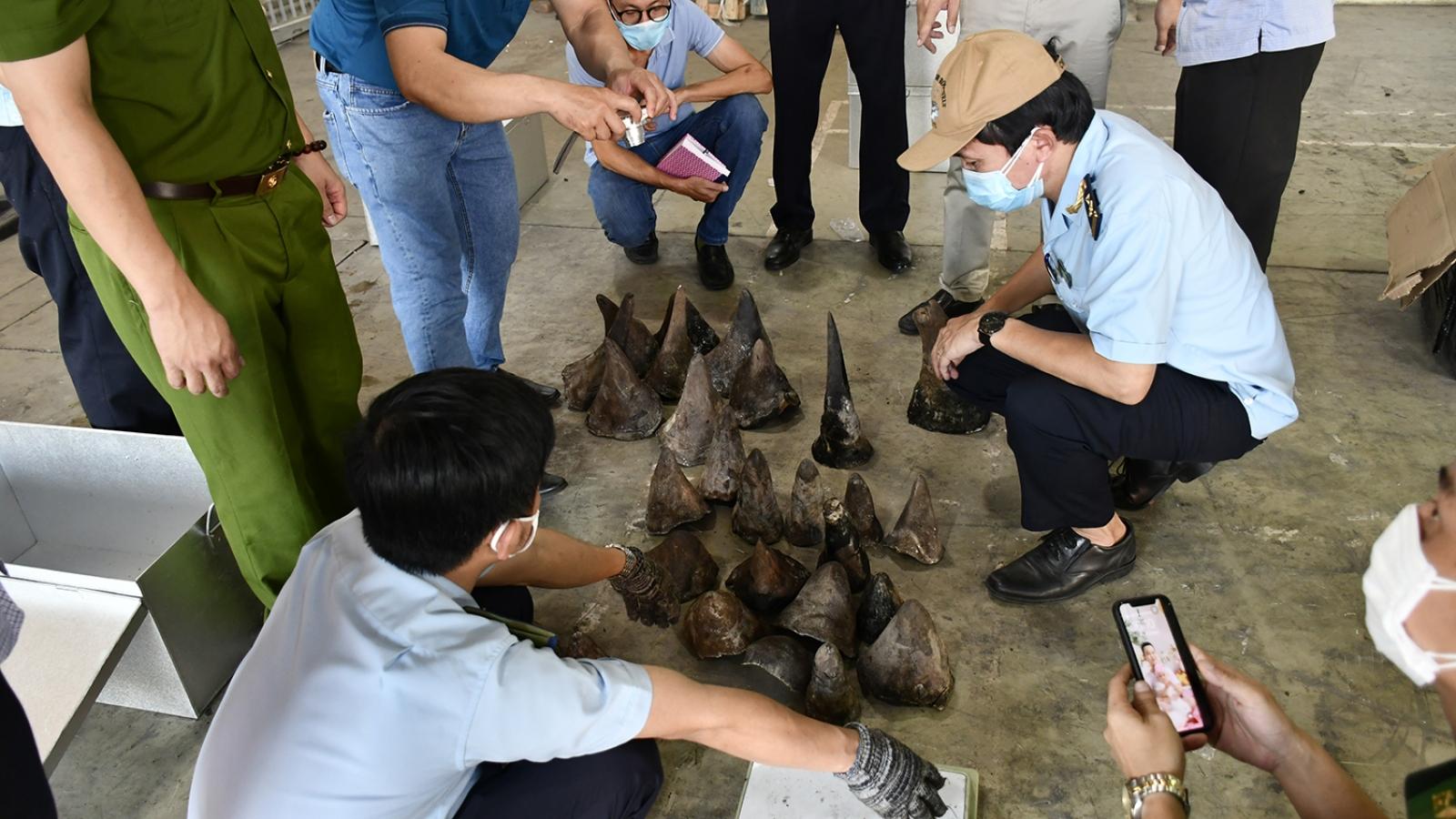 Bắt giữ gần 140 kg hàng nhập khẩu nghi sừng Tê giác và xương động vật hoang dã