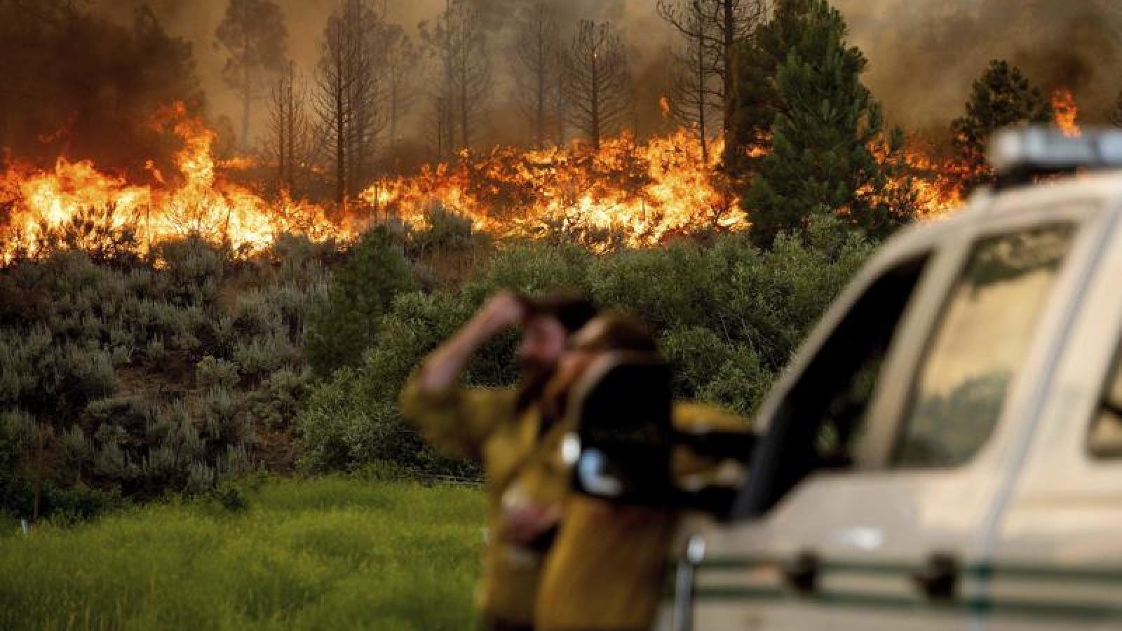 Nước từ máy bay chưa chạm đất đã bốc hơi, cháy rừng ở Mỹ gần như mất kiểm soát