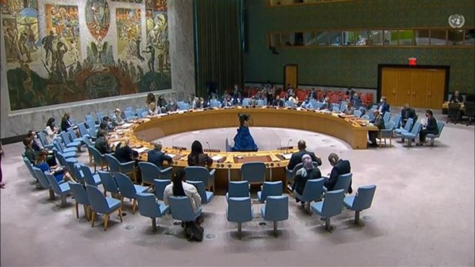 Vietnam greatly values UNAMID's contributions