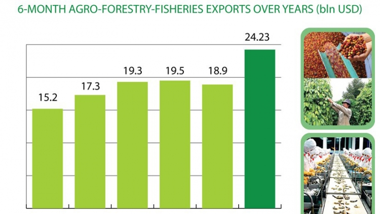 Agro-forestry-fisheries exports surpass US$24 billion in H1