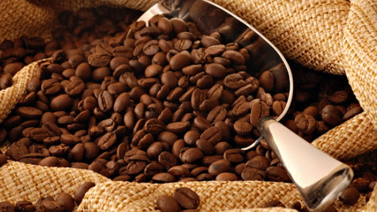 Coffee exports enjoy price surge over five-month period
