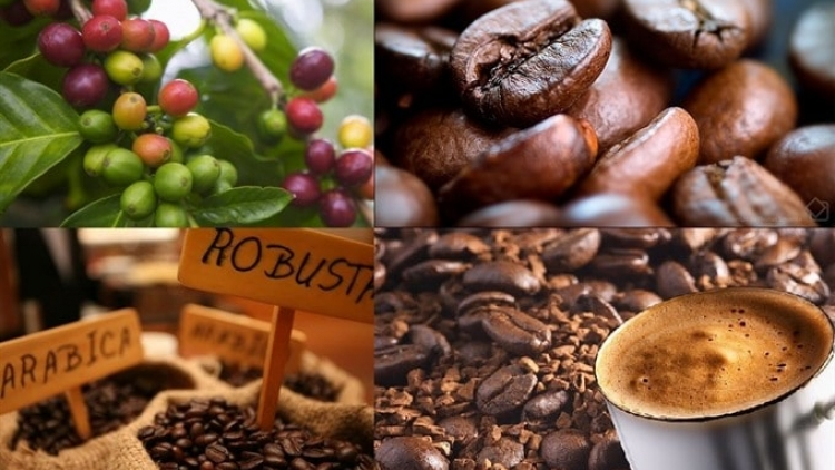 Coffee export prices enjoy surge in major markets