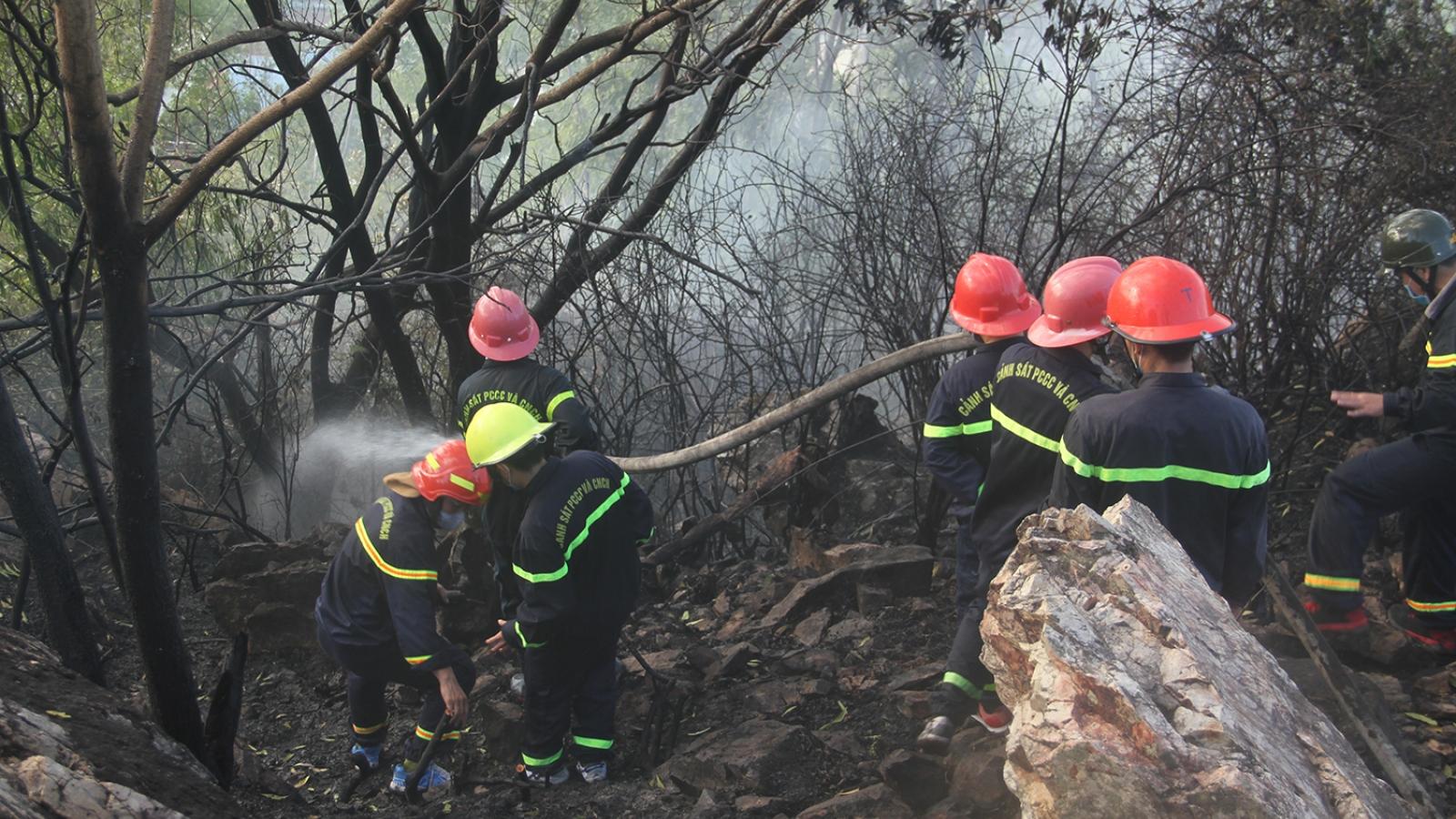 Cháy rừng trên núi Bà Hỏa ở thành phố Quy Nhơn