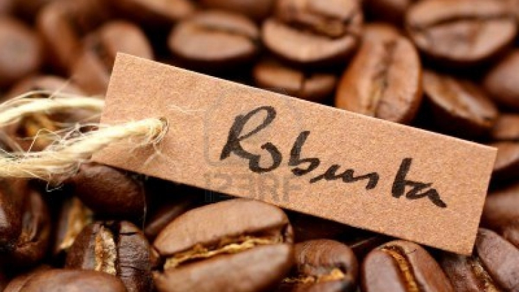 Vietnam becomes fifth largest supplier of coffee to Austria