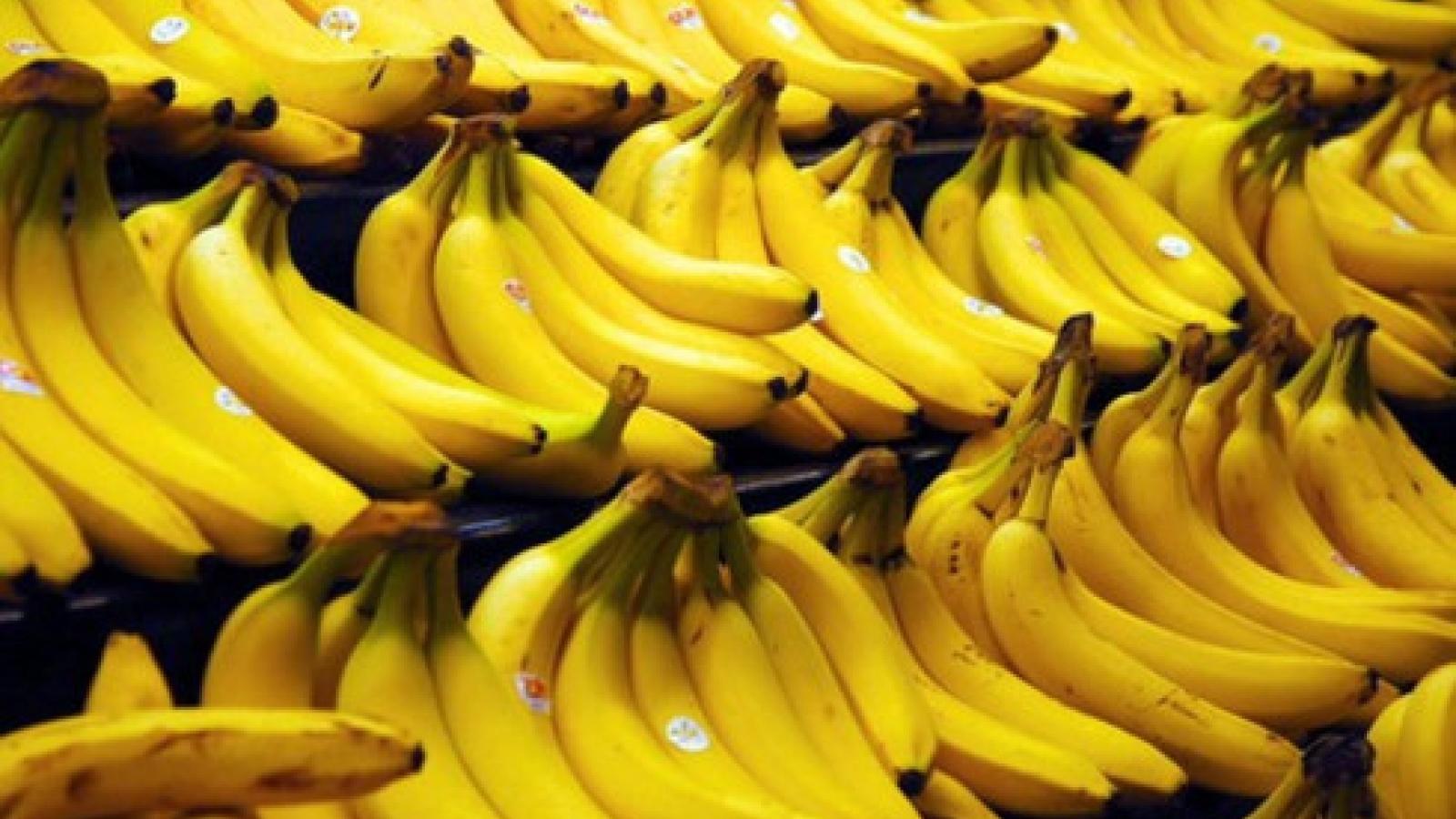 RoK increases banana imports from Vietnamese market