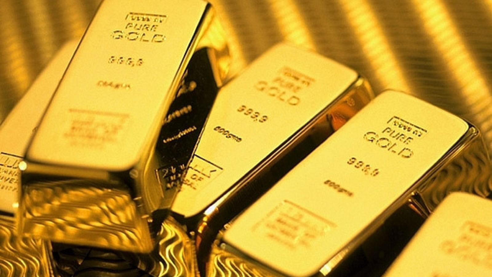Giá vàng SJC đi ngang khi giá thế giới tăng