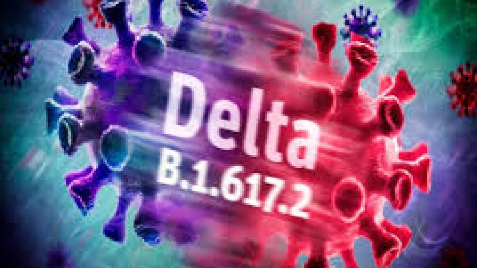 Biến chủng Delta lây lan nhanh tương tự bệnh thủy đậu