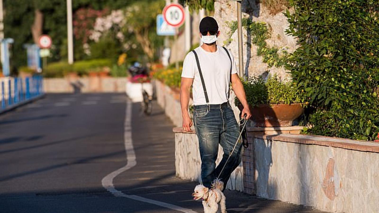 Orlando Bloom phong độ dẫn thú cưng đi dạo phố ở Ý