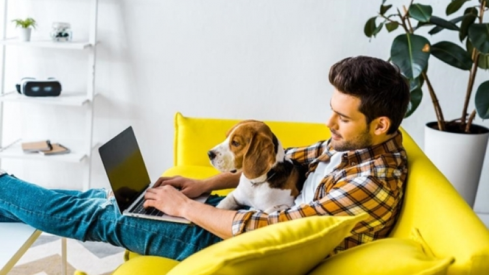 Mùa dịch thứ 4: Không còn ai thích làm việc ở nhà