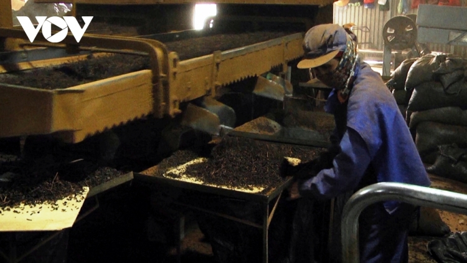 Tea exports to China, India rise sharply