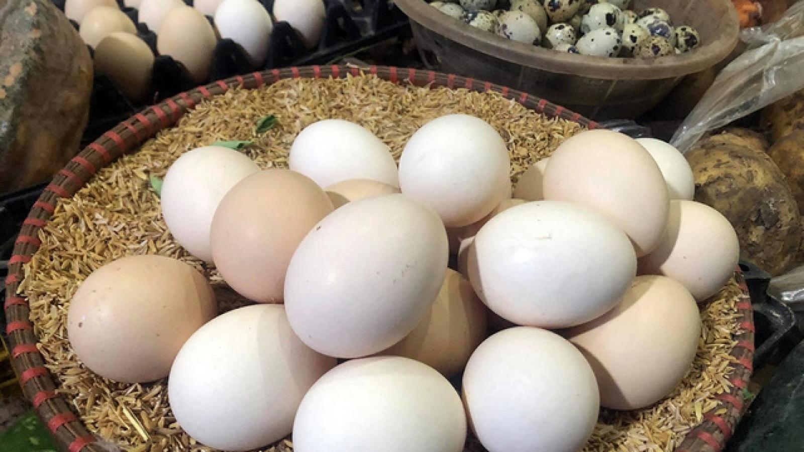 Vì sao giá trứng gà, vịt tăng tới 6.000 đồng/quả?