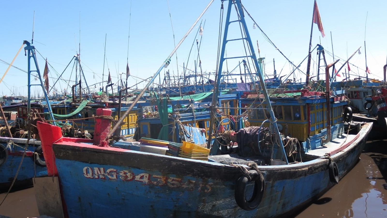 Quảng Ngãi gỡ khó cho ngư dân vùng dịch