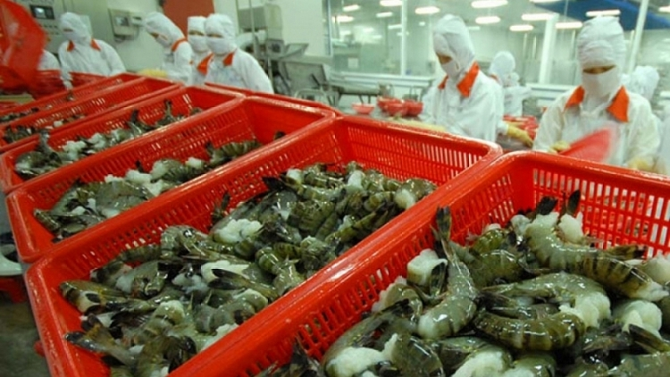 Shrimp exports witness robust growth in FTA markets