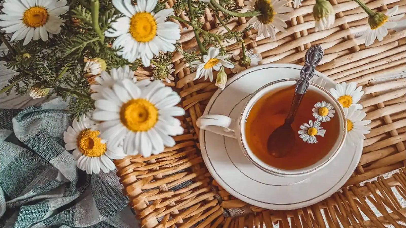 10 lựa chọn thay thế cho trà và cà phê mà bạn có thể thử