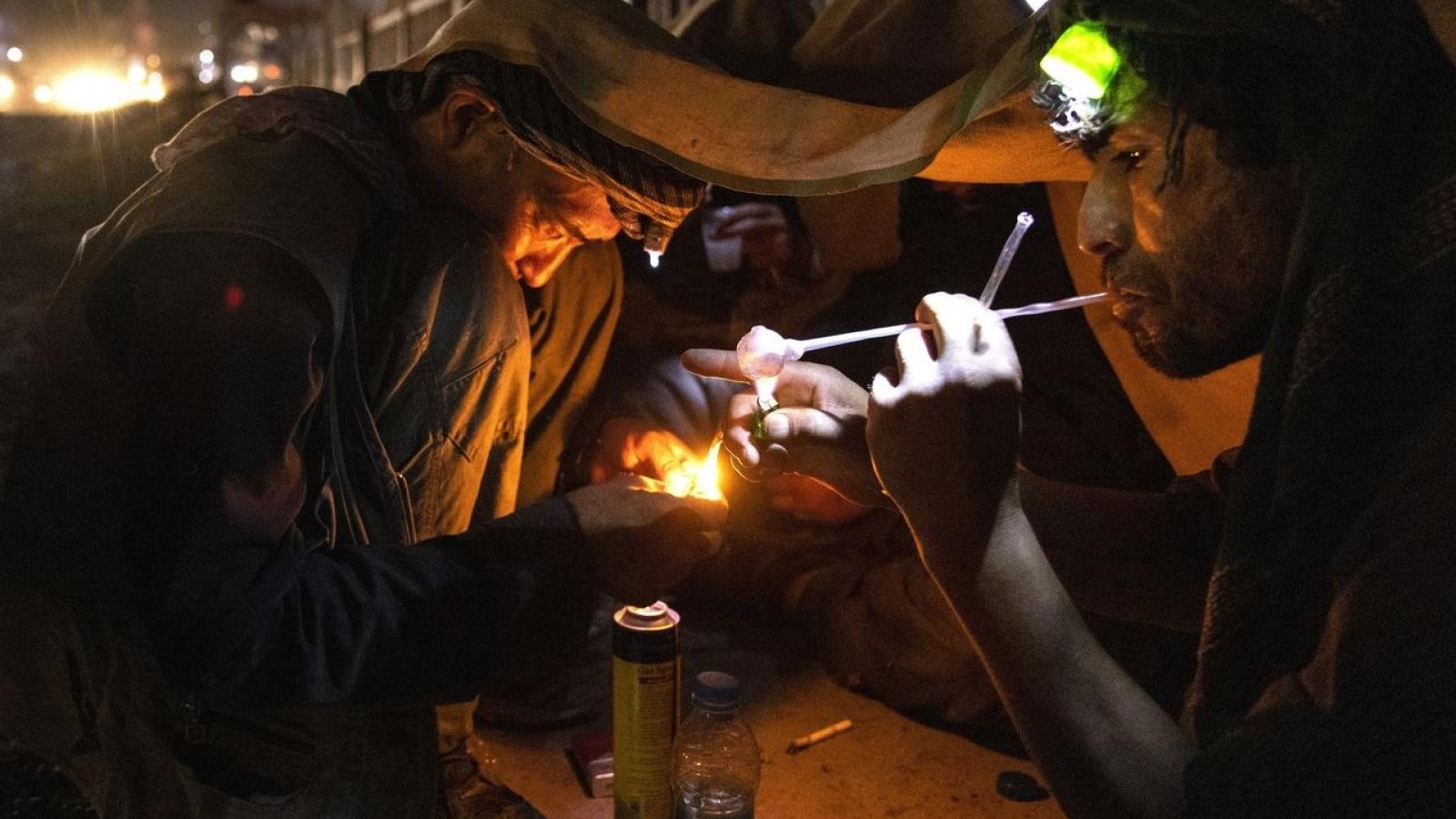 Taliban ra lệnh cấm trồng thuốc phiện, giá nguyên liệu chế heroin tăng vọt ở Afghanistan