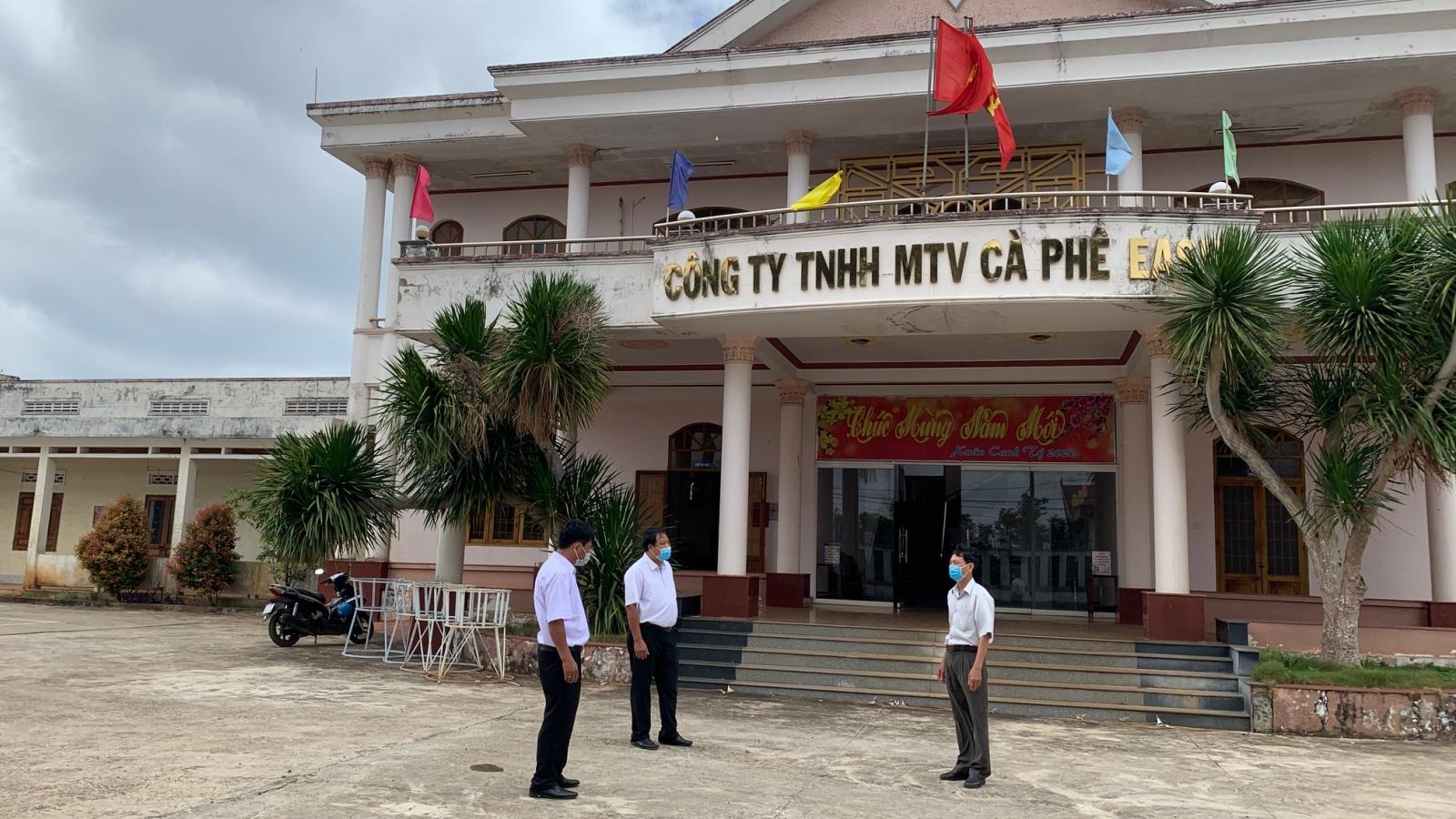 Đắk Lắk: Gia hạn 173 tỷ đồng tiền thuế, tiếp tục triển khai miễn, giảm thuế