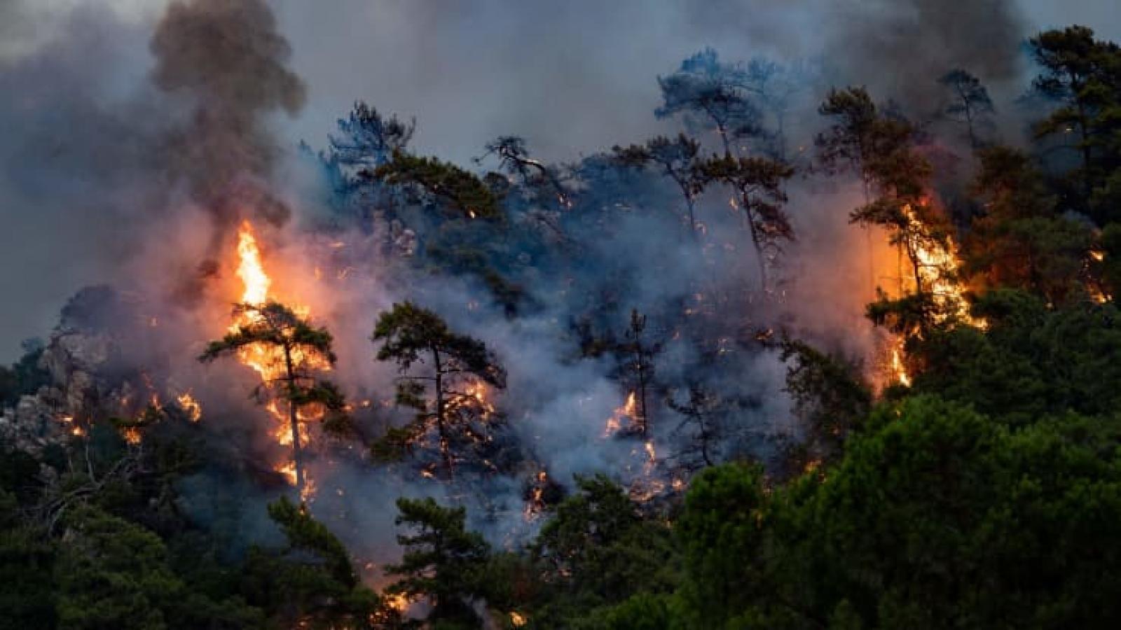 """Liên Hợp Quốc công bố báo cáo """"báo động đỏ"""" cho nhân loại về biến đổi khí hậu"""