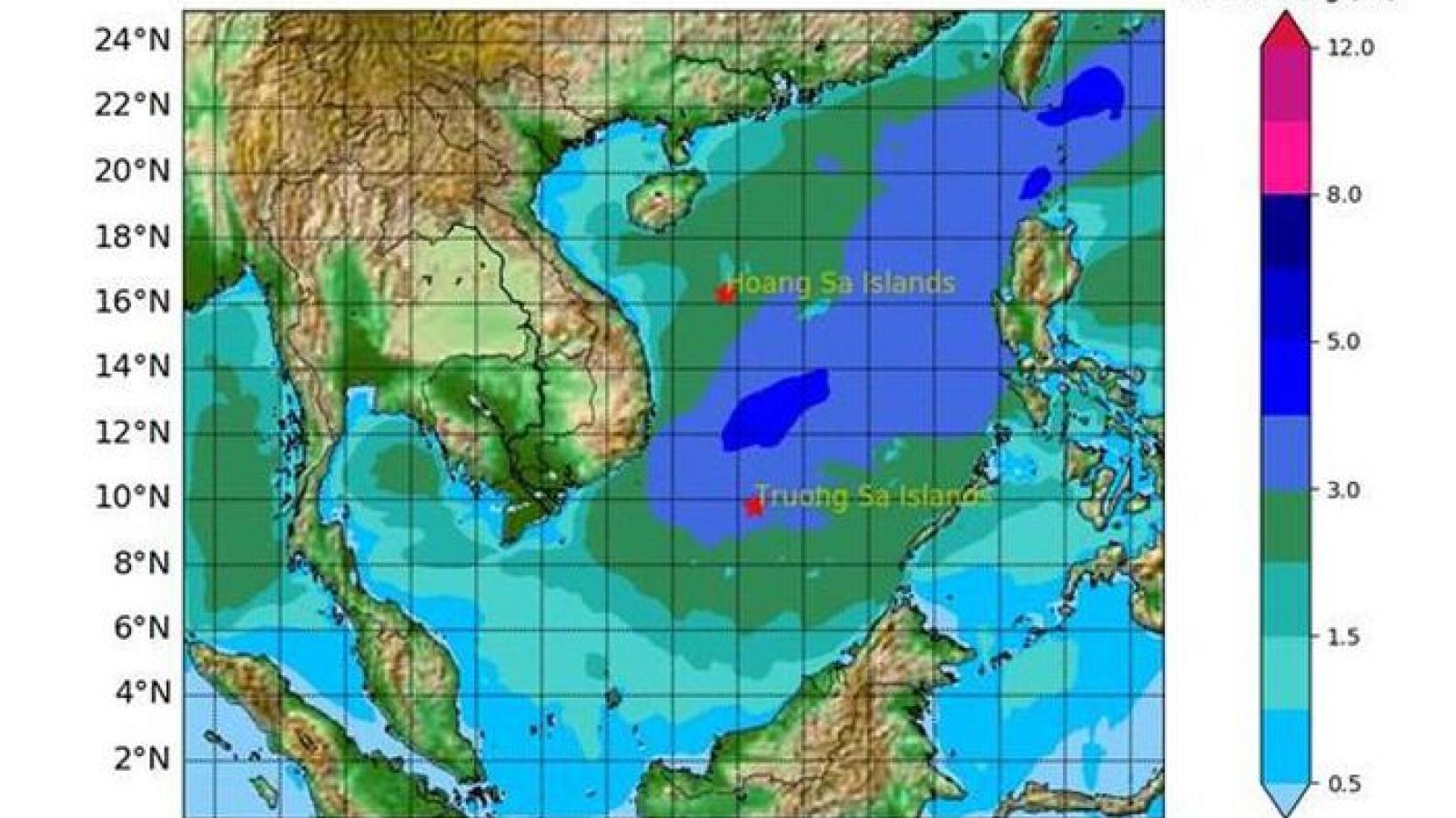 Ứng phó với áp thấp nhiệt đới trên khu vực Bắc Biển Đông