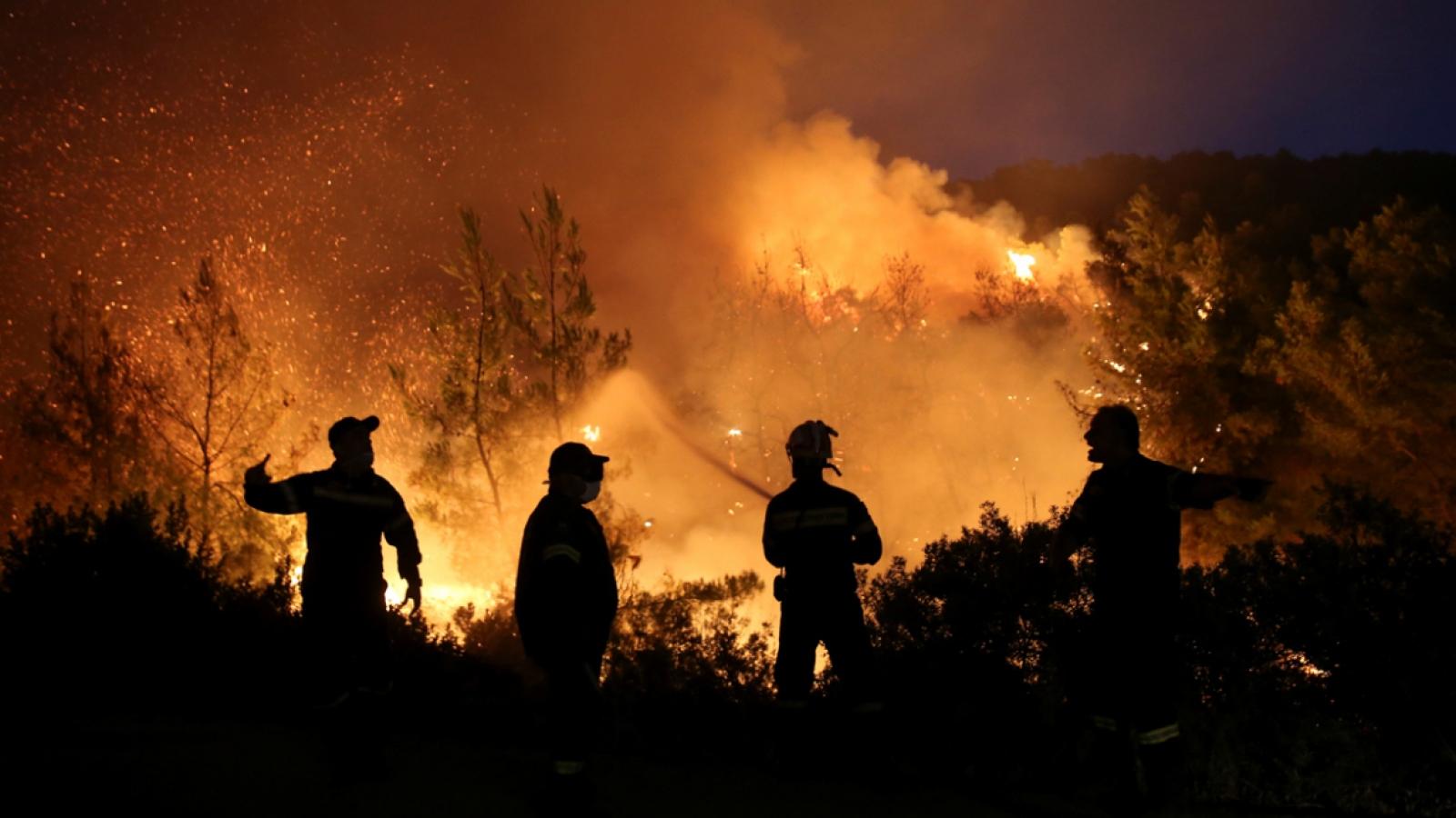 Tháng 7 nắng nóng kỷ lục, nhiều quốc gia đối mặt với cháy rừng nghiêm trọng