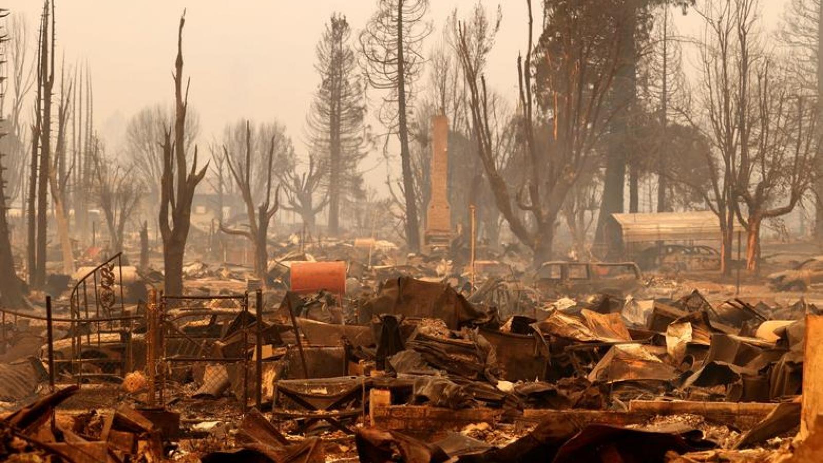 California (Mỹ) điêu đứng vì cháy rừng