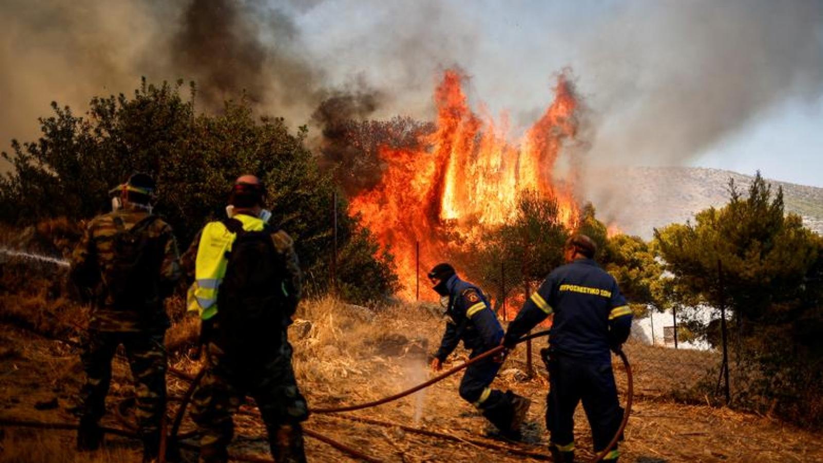 """Châu Âu """"quay cuồng"""" với nắng nóng kỷ lục và hàng chục nghìn vụ cháy rừng"""