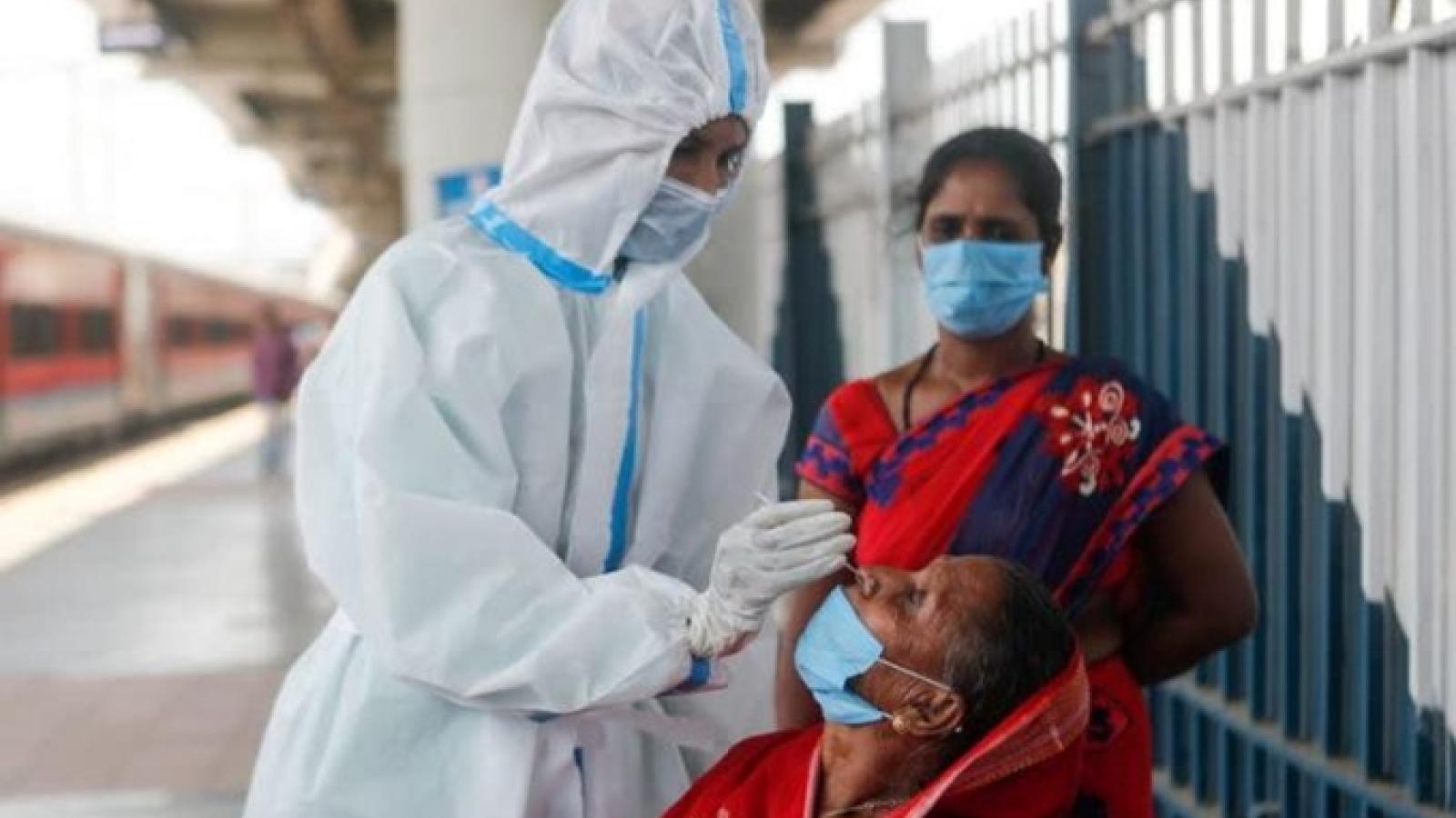 Chuyên gia WHO: Covid-19 tại Ấn Độ có thể đang ở vào giai đoạn lây nhiễm địa phương