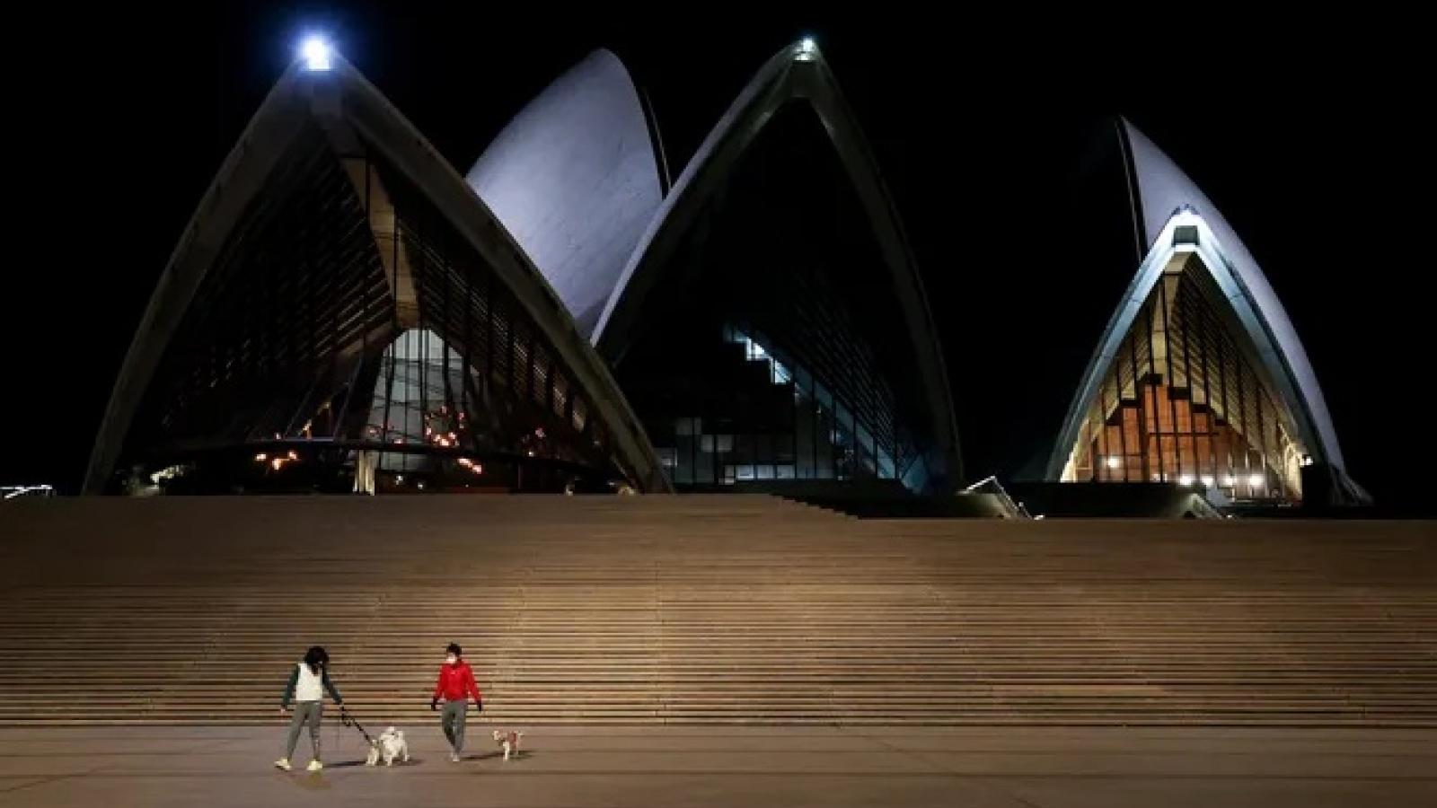 Australia: Bắn chết 15 con chó để ngăn ngừa Covid-19