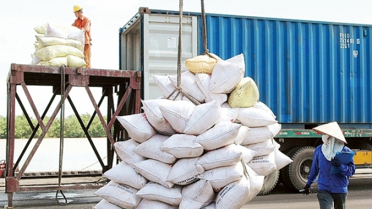 Prices of export rice fall to lowest figure in two years