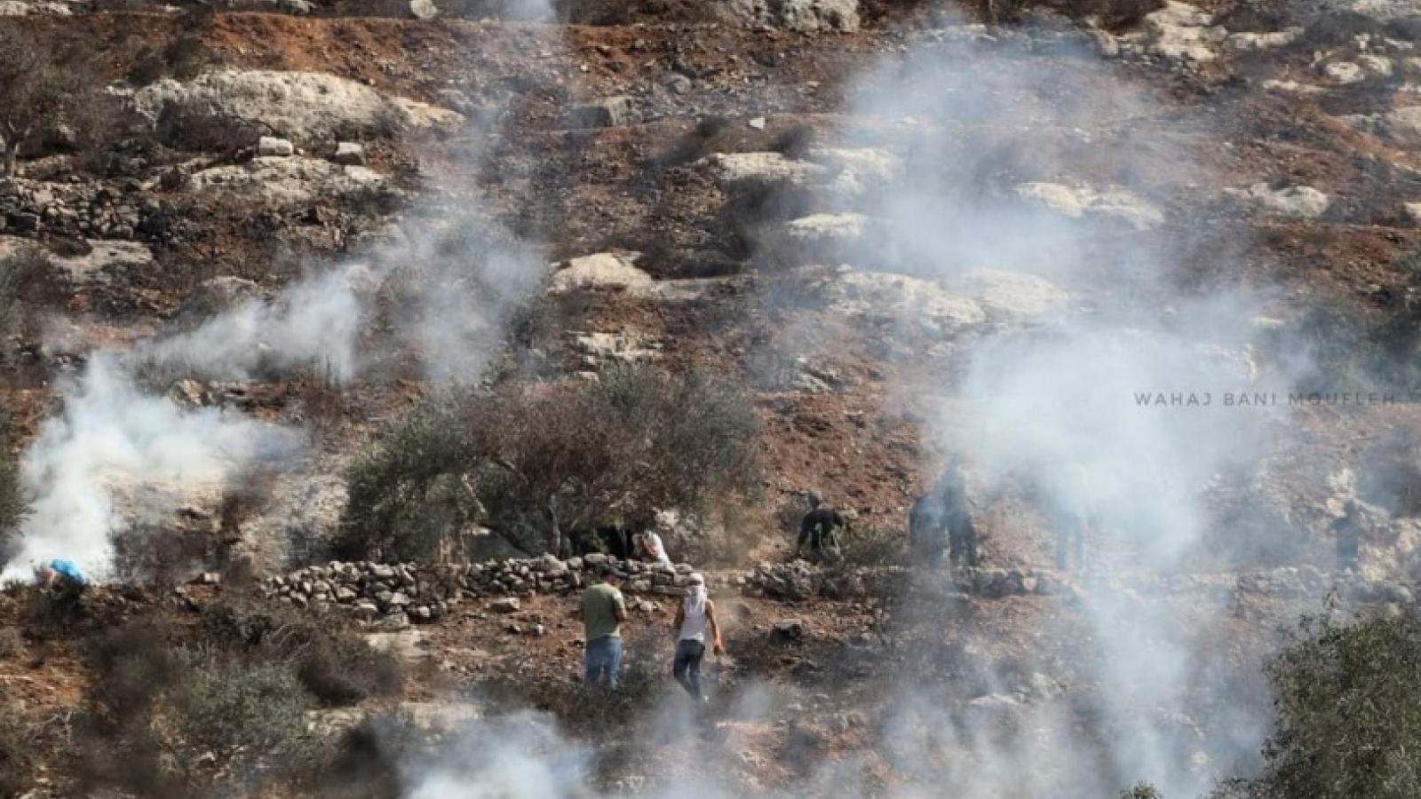 Hàng chục người Palestine bị thương sau đụng độ với quân đội Israel