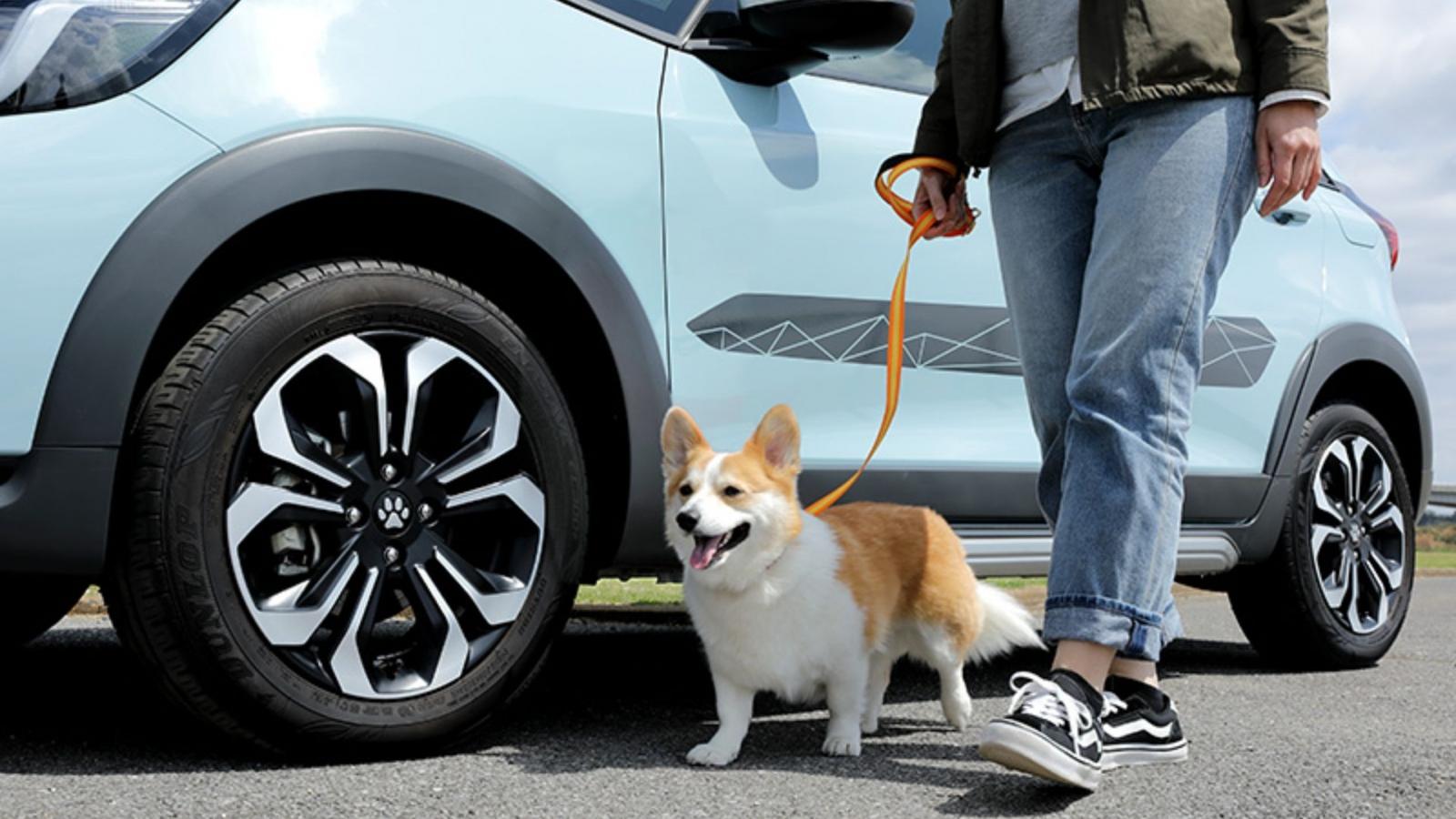 Honda tung ra gói phụ kiện dành cho người yêu thú cưng