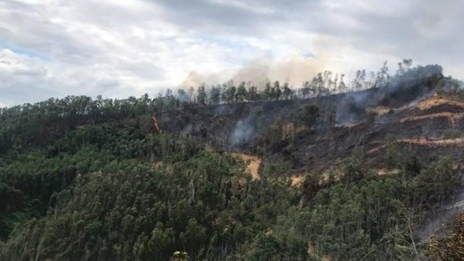 Một người đàn ông tử vong khi tham gia chữa cháy rừng keo