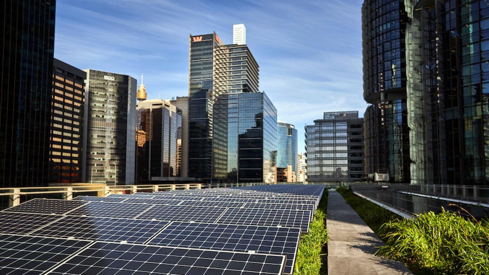 Chính phủ Australia cần có chính sách rõ ràng về cắt giảm khí thải