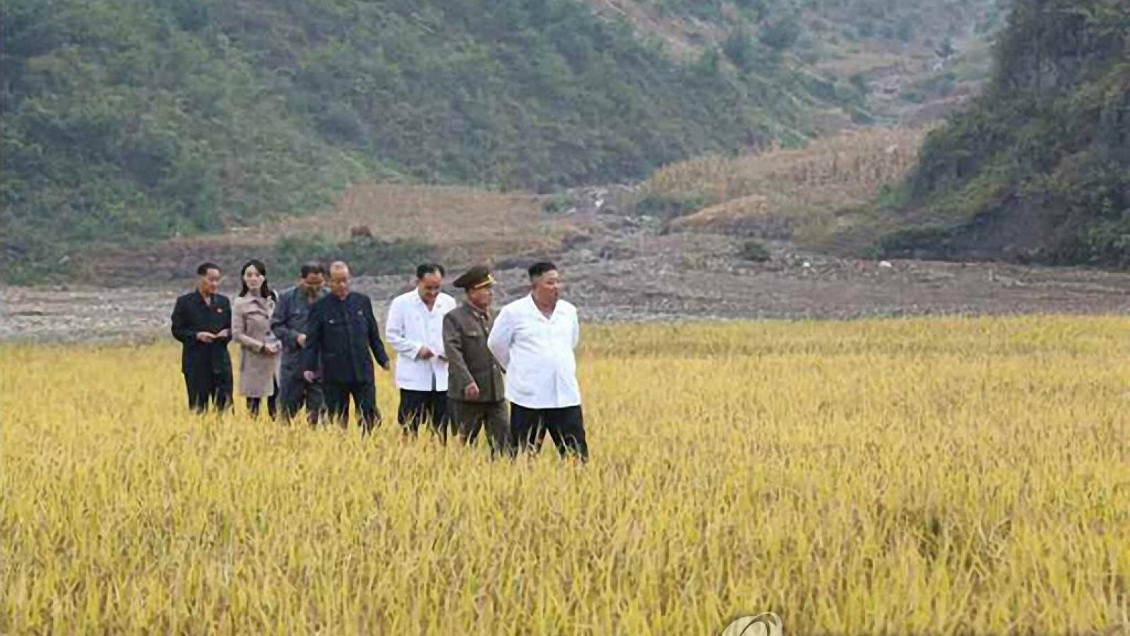 Nhà lãnh đạo Triều Tiên điều động quân đội hỗ trợ lũ lụt